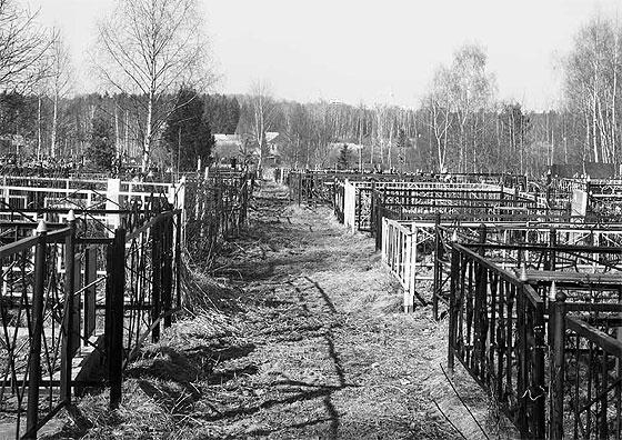Именно по тому, как обихаживаем могилы наших родственников, в каком состоянии кладбище, на котором они похоронены...