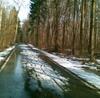 Лыжероллерная трасса почти готова клетнему сезону, Лыжероллерная трасса в Одинцово, трасса им. Ларисы Лазутиной