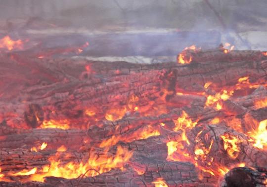 В Ярославле начали гореть торфяники