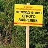 Проход влес запрещен, нолыжероллерная трасса открыта