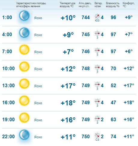 Какая погода будет на День города Одинцово?