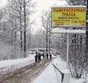Водинцовском лесу снимают рекламу известного сотового оператора