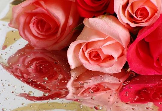 Букет цветов на 8 марта рисунок, цветы в детского сада купить новосибирск