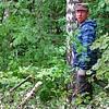 Проход налыжероллерную трассу закрыт: вырубают лес