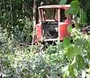 ВОдинцово продолжают вырубать лес (фото)