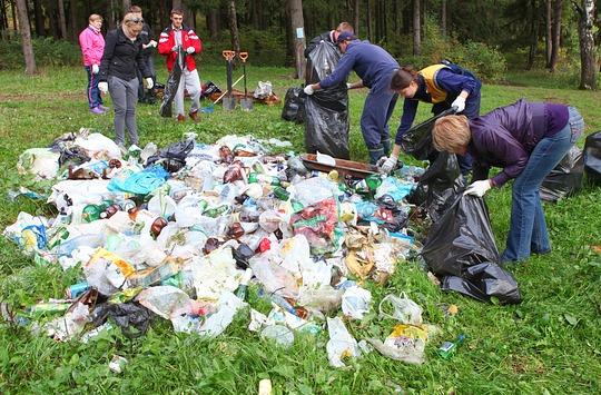 мусора в лесу рисунок