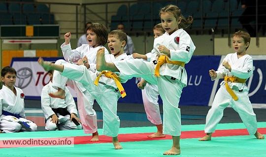 Спортивные клубы для детей в москве кассиры в клубы москвы