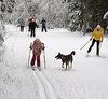 Одинцовцы открывают лыжный сезон