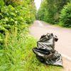 Праздник леса вОдинцово: никто инезаметил, Подушкинский лесопарк, мусор, уборка, десант в спецодежде