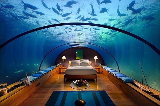 Конрад, Мальдивы, подводный номер