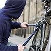 НаЛыжероллерной трассе изпроката украли дорогие велосипеды (видео)