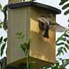 1апреля— День птиц вСпортивном парке Одинцово