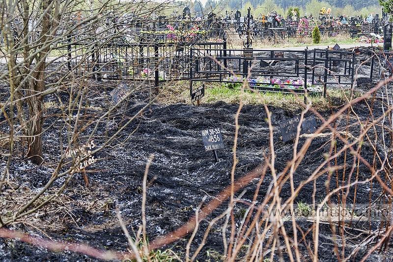 Пожар на кладбище Лайково, 27.04.2014, Последствия пожара на кладбище Лайково