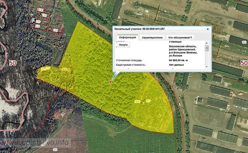 Большевяземское кладбище, Кадастровая карта участка под кладбищем