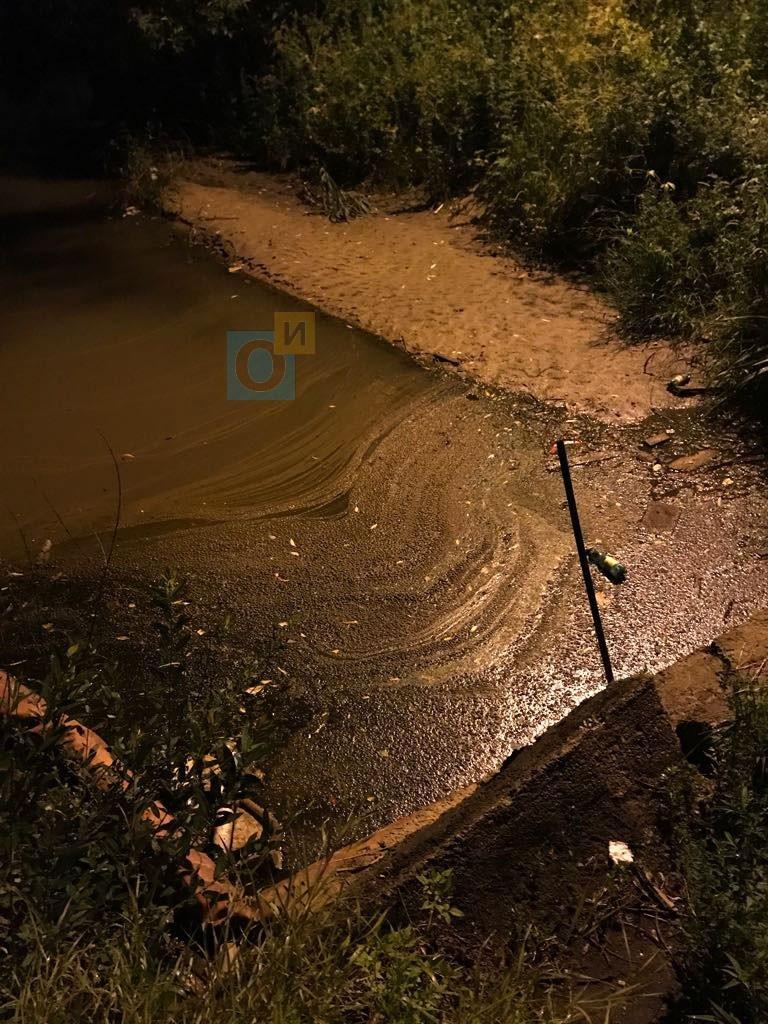 Немчиновский пруд, плёнка на поверхности, Немчиновский пруд продолжают заливать нефтепродуктами