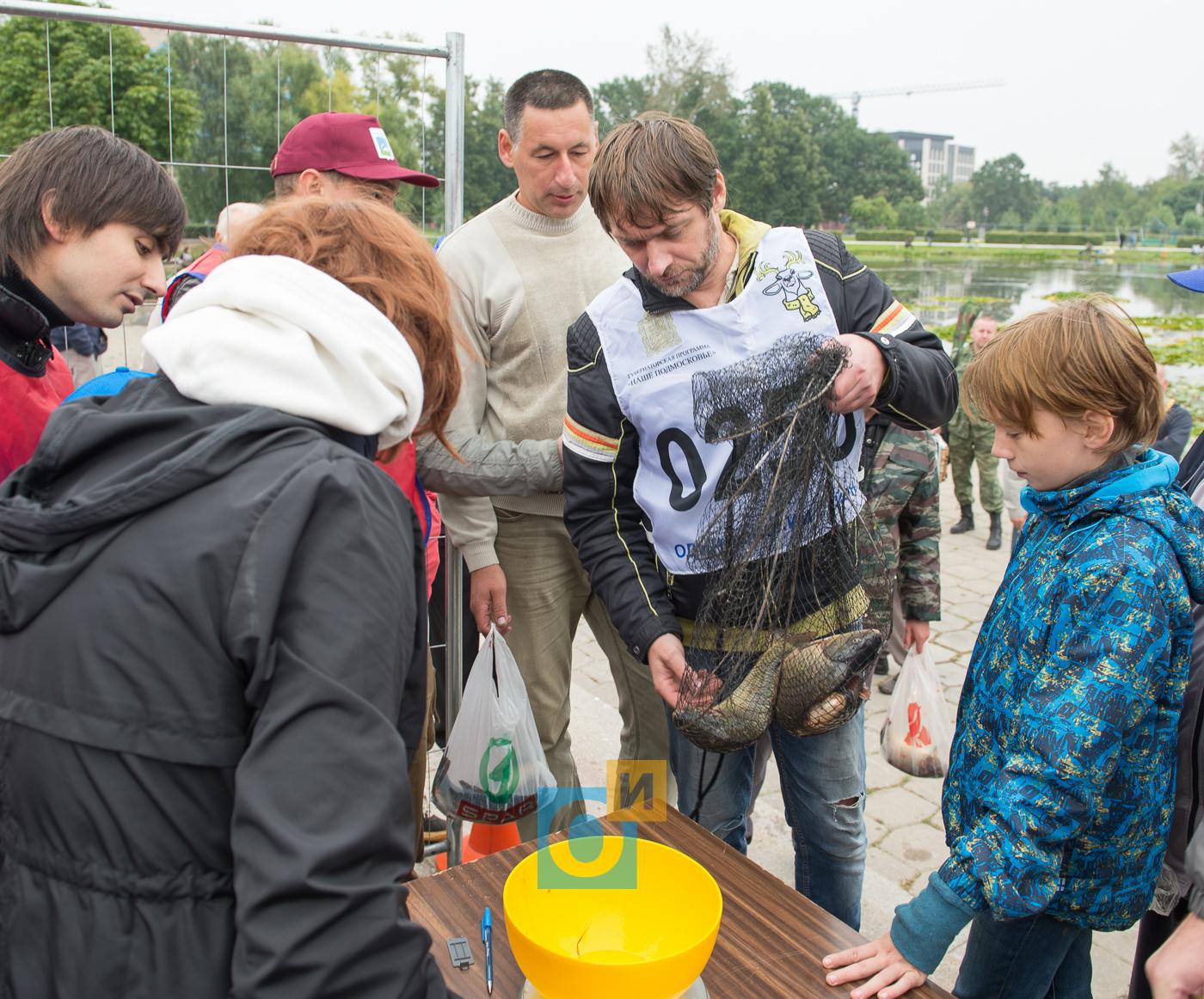 Соревнования по рыбной ловле в одинцово