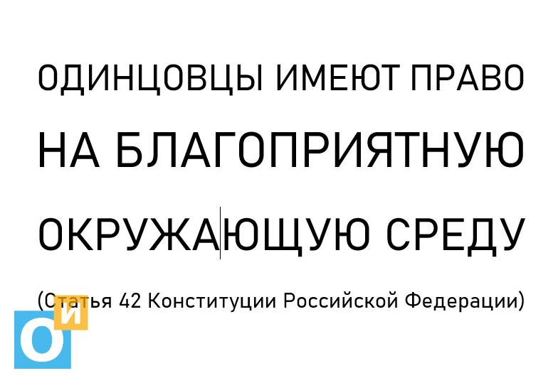 «Одинцовцы имеют право на благоприятную окружающую среду», В Одинцово задержали активистов, которые агитировали за благоприятную окружающую среду
