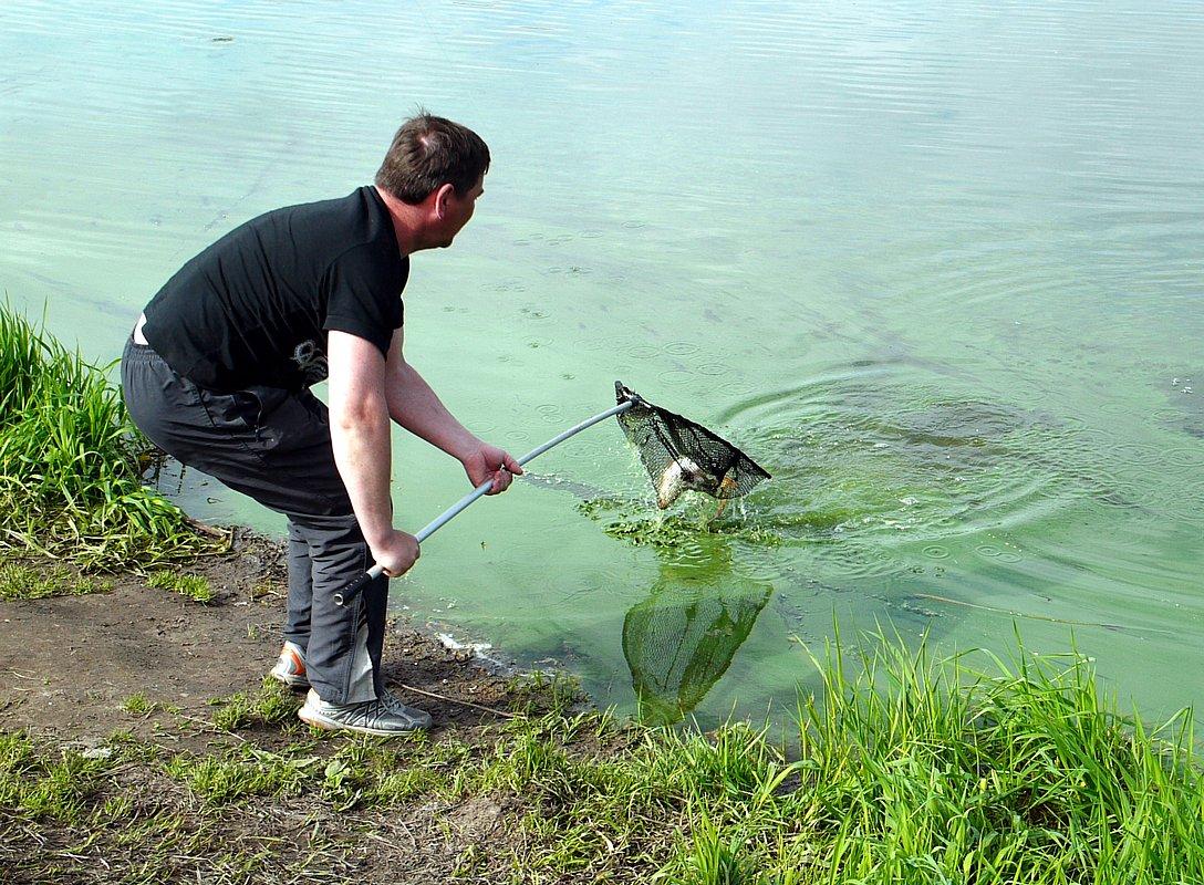 платная рыбалка фишка одинцовский район липки